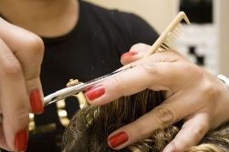 Brownsboro AL hairdresser cutting hair